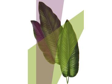 queence Acrylglasbild Blätter B/H/T: 100 cm x 150 2,4 grün Acrylglasbilder Bilder Bilderrahmen Wohnaccessoires