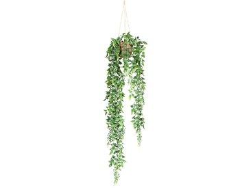 Creativ green Kunstranke Ruscus-Hängeampel B/H: 32 cm x 70 grün Kunstranken Kunstpflanzen Wohnaccessoires