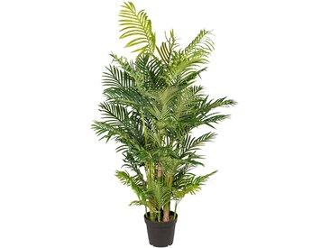 Creativ green Kunstpalme Arecapalme (1 Stück) H: 170 cm grün Kunstpalmen Kunstpflanzen Wohnaccessoires
