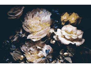Leonique Acrylglasbild Blüten