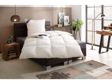 Daunenbettdecke, 100% First Class, Excellent, Füllung: Daunen, Bezug: Baumwolle weiß, 240x220 cm, Premium weiß Daunendecke Bettdecken Bettdecken, Kopfkissen Unterbetten Bettdecke