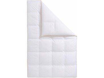 Gänsedaunenbettdecke, Frau Holle, Füllung: 100% Gänsedaunen, Bezug: Baumwolle weiß, 155x220 cm, Premium weiß Daunendecke Bettdecken Bettdecken, Kopfkissen Unterbetten Bettdecke