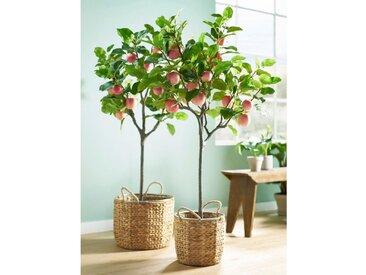 Schneider Kunstbaum H: 150 cm grün Kunstbäume Kunstpflanzen Wohnaccessoires