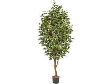 Creativ green Kunstpflanze Ficus Benjamini (1 Stück)