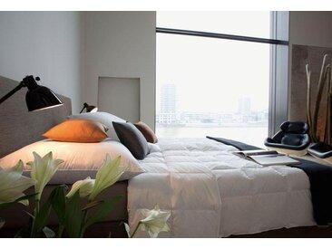 Gänsedaunenbettdecke, Harmony, Centa-Star, Füllung: 100% Gänsedaunen, Bezug: Baumwolle weiß, 200x200 cm weiß Daunendecke Bettdecken Bettdecken, Kopfkissen Unterbetten Bettdecke