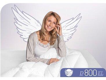 Gänsedaunenbettdecke, D800, Schlafstil, Füllung: 100% Gänsedaunen, Bezug: Baumwolle weiß, 200x220 cm weiß Daunendecke Bettdecken Bettdecken, Kopfkissen Unterbetten Bettdecke