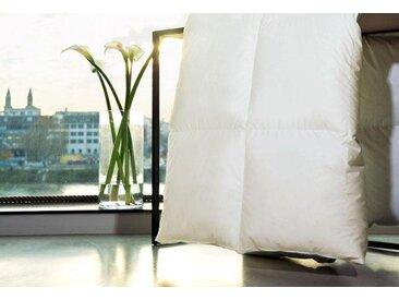 Gänsedaunenbettdecke, Harmony, Centa-Star, Füllung: 100% Gänsedaunen, Bezug: Baumwolle weiß, 135x200 cm weiß Daunendecke Bettdecken Bettdecken, Kopfkissen Unterbetten Bettdecke
