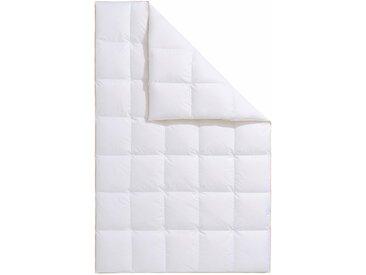 Gänsedaunenbettdecke, Frau Holle, Füllung: 100% Gänsedaunen, Bezug: Baumwolle weiß, 200x200 cm, Premium weiß Daunendecke Bettdecken Bettdecken, Kopfkissen Unterbetten Bettdecke