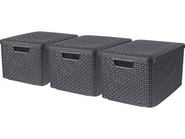 Curver Aufbewahrungsbox Style L, (Set, 3 St.), mit Deckel anthrazit. x 30 Liter B/H/T: 33 cm 25 45 grau Kleideraufbewahrung Aufbewahrung Ordnung Wohnaccessoires