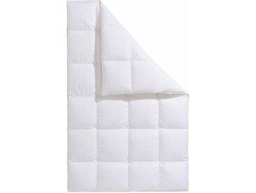 Daunenbettdecke, Frau Holle, Füllung: 100% Daunen, Bezug: Baumwolle weiß, 155x220 cm, Premium weiß Daunendecke Bettdecken Bettdecken, Kopfkissen Unterbetten Bettdecke