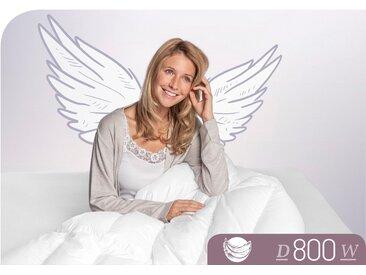 Schlafstil Gänsedaunenbettdecke D800, warm, Füllung 100% Gänsedaunen, Bezug Baumwolle, (1 St.), hergestellt in Deutschland, allergikerfreundlich B/L: 200 cm x 220 cm, warm weiß Allergiker Bettdecke Bettdecken Bettdecken, Kopfkissen Unterbetten
