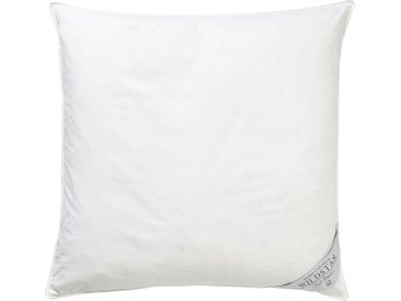 Haeussling Gänsedaunenbettdecke B/L: 155 cm x 200 cm, Bezug: Baumwolle Füllung: Gänsedaune/-feder weiß Allergiker Bettdecke Bettdecken Bettdecken, Kopfkissen Unterbetten