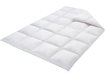 Daunenbettdecke, Bayern, Schäfer weiß, 240x220 cm weiß Daunendecke Bettdecken Bettdecken, Kopfkissen Unterbetten Bettdecke