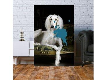 queence Acrylglasbild Hund 80x120 cm blau Acrylglasbilder Bilder Bilderrahmen Wohnaccessoires
