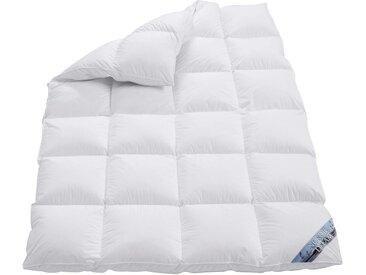 OBB Daunenbettdecke 2 (155x200 cm 1100 g), Warm, 90% Daunen - 10% Federn weiß Daunendecke Bettdecken Bettdecken, Kopfkissen Unterbetten Decken