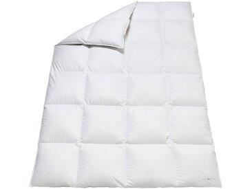 OBB Bett 1 (135x200 cm 1020 g), Extra warm, 90% Daunen - 10% Federn, mit 4 Innensteg weiß Daunendecke Bettdecken Bettdecken, Kopfkissen Unterbetten Decken