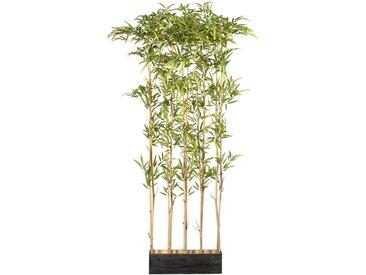 Creativ green Künstliche Zimmerpflanze Bambusraumteiler, im Holzkasten H: 160 cm grün Zimmerpflanzen Kunstpflanzen Wohnaccessoires