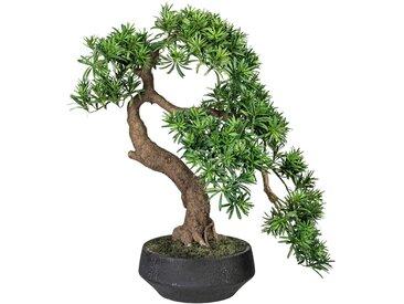 Creativ green Kunstpflanze Bonsai Podocarpus (1 Stück)