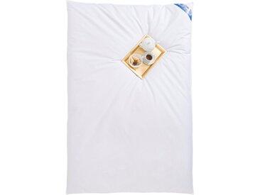 RIBECO Federbettdecke Leon, extrawarm, (1 St.), unser Ballonbett, wie in alten Zeiten B/L: 135 cm x 200 cm, extrawarm weiß Allergiker Bettdecke Bettdecken Bettdecken, Kopfkissen Unterbetten