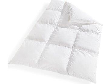 Daunenbettdecke, Standard-plus, Schäfer weiß, 240x220 cm weiß Daunendecke Bettdecken Bettdecken, Kopfkissen Unterbetten Bettdecke
