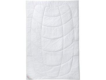 Naturhaarbettdecke, Kamelhaar, SANDERS OF GERMANY weiß, 200x200 cm weiß Allergiker Bettdecke Bettdecken Bettdecken, Kopfkissen Unterbetten