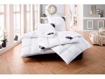 Daunenbettdecke, Lugano, Excellent, Füllung: 100% Daunen, Bezug: Baumwolle weiß, 155x220 cm, Premium weiß Daunendecke Bettdecken Bettdecken, Kopfkissen Unterbetten Bettdecke