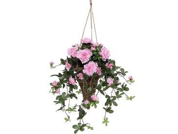 Kunstpflanze Azalee in Hängeampel (1 Stück) 0, 38x38x53 cm rosa Künstliche Zimmerpflanzen Kunstpflanzen Wohnaccessoires