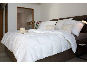 Centa-Star Gänsedaunenbettdecke Moments, normal, Füllung 90% Gänsedaunen, 10% Gänsefedern, Bezug 100% Baumwolle, (1 St.), Weiche, kuschelige Gänsedaunen umhüllt von feinster Mako-Einschütte B/L: 200 cm x cm, normal weiß Allergiker Bettdecke Bettdecken Bettdecken, Kopfkissen Unterbetten