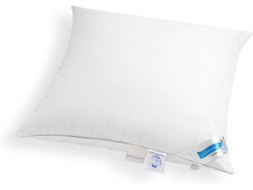 Schäfer EXKLUSIV Daunenkissen Bayern, (1 St.) B/L: 80 cm x weiß Allergiker Kopfkissen Bettdecken, Unterbetten