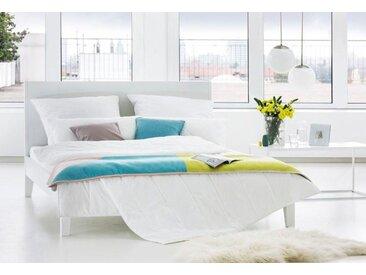 Centa-Star Kunstfaserbettdecke Famous, normal, Bezug 100% Baumwolle, (1 St.), mit spezieller, temperaturregulierender Mikrofaser weiß, 200x200 cm, Basic weiß Bettdecken Bettdecken, Kopfkissen Unterbetten Bettdecke