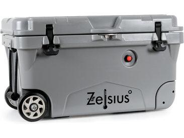 Zelsius Kühlbox grau 50 Liter mit Räder  Cooling Box für Auto Camping