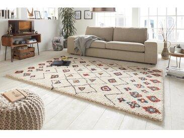 Farbenfroher Hochflor Teppich ETHNO 230x160cm beige rot mit Blumen-Muster