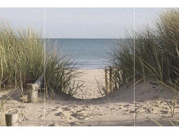Euroart GLASBILD Strand & Meer , Mehrfarbig, Glas, 80x120x1.40 cm