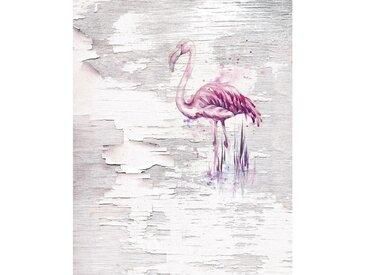 XXXLutz VLIESTAPETE , Flamingo, 200x250 cm