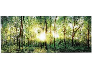 Euroart GLASBILD Landschaft & Beige , Mehrfarbig, Glas, 125x50 cm