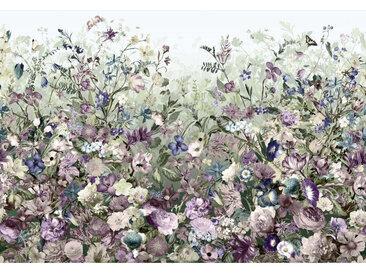 Komar VLIESTAPETE BOTANICA , Mehrfarbig, Papier, Blume, 368x248 cm
