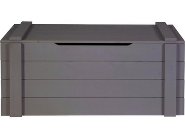 Livetastic SPIELZEUGTRUHE Kiefer massiv Grau , Holz, 96x44x44 cm