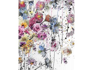 Komar VLIESTAPETE , Blume, 200x250 cm