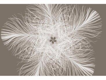 XXXLutz VLIESTAPETE , Weiß, Beige, Papier, 368x248xcm cm