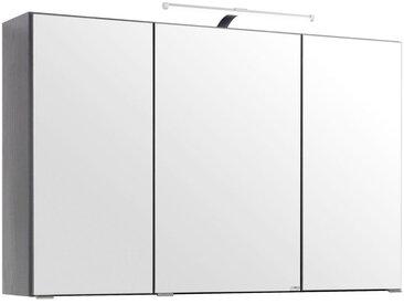 Xora SPIEGELSCHRANK Grau , Glas, 6 Fächer, 100x64x20 cm