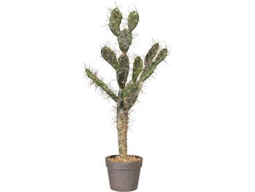 XXXLutz KUNSTPFLANZE Kaktus , Grün, Kunststoff, 73 cm