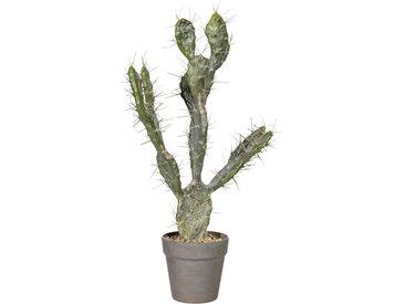MID.YOU KUNSTPFLANZE Kaktus , Grün, Kunststoff, 58 cm