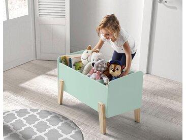 Vipack Spielzeugtruhe »Kiddy«, grün