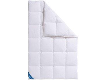 Daunenbettdecke + Kopfkissen »Hanna«, 155x220 cm + 80x80 cm, Schlafwelt, weiß