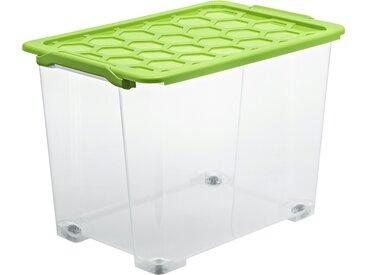 Rotho Aufbewahrungsbox mit Deckel ¦ grün ¦ Kunststoff ¦ Maße