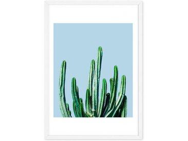 Cactus, mit Rahmen (48 x 65 cm)