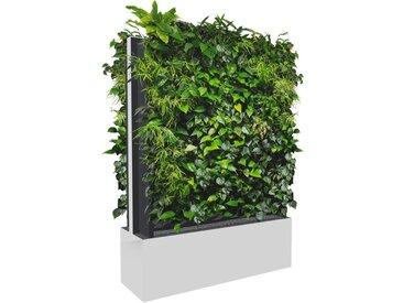 C+P Mobile Pflanzenwand für beidseitige Bepflanzung, b120xt40xh163cm