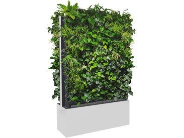 C+P Mobile Pflanzenwand für beidseitige Bepflanzung, b100xt40xh163cm