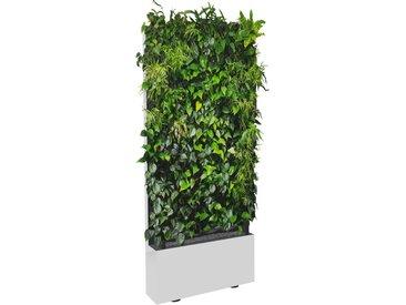 C+P Mobile Pflanzenwand für einseitige Bepflanzung mit Trays, b80xt40xh198cm