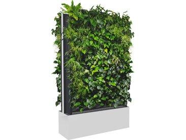 C+P Pflanzenwand auf Füßen, mit Trays für beidseitige Bepflanzung, b100xt40xh232cm